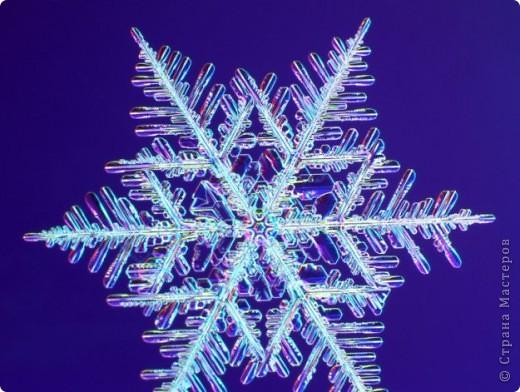 """Под Новый год окна домов, витрины магазинов украшают снежинками. Правда, чаще всего,   к настоящим снежинкам они не имеют никакого отношения. А, значит, и называться снежинками, с точки зрения физики,  не имеют права.  """"Газета.Ru"""" разместила статью профессора химии из Германии Томаса Купа, который  написал  письмо с напоминанием, что в природе бывают только шестиугольные снежинки. """"Мы, кто использует достижения науки и любит хороший дизайн, должны направить свои усилия на то, чтобы растаяли все четырех-, пяти- и восьмиугольные снежинки, которые встречаются на открытках, в детских книжках, в рекламе, и просвещать тех, кто невольно генерирует такие снежинки и распространяет их. От всего сердца приглашаю всех обсудить истинную красоту науки за кружкой горячего пунша"""", - говорится в письме Купа. фото 21"""