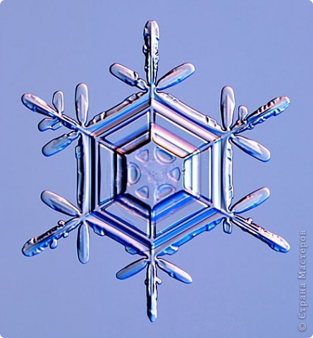 """Под Новый год окна домов, витрины магазинов украшают снежинками. Правда, чаще всего,   к настоящим снежинкам они не имеют никакого отношения. А, значит, и называться снежинками, с точки зрения физики,  не имеют права.  """"Газета.Ru"""" разместила статью профессора химии из Германии Томаса Купа, который  написал  письмо с напоминанием, что в природе бывают только шестиугольные снежинки. """"Мы, кто использует достижения науки и любит хороший дизайн, должны направить свои усилия на то, чтобы растаяли все четырех-, пяти- и восьмиугольные снежинки, которые встречаются на открытках, в детских книжках, в рекламе, и просвещать тех, кто невольно генерирует такие снежинки и распространяет их. От всего сердца приглашаю всех обсудить истинную красоту науки за кружкой горячего пунша"""", - говорится в письме Купа. фото 20"""