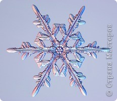 """Под Новый год окна домов, витрины магазинов украшают снежинками. Правда, чаще всего,   к настоящим снежинкам они не имеют никакого отношения. А, значит, и называться снежинками, с точки зрения физики,  не имеют права.  """"Газета.Ru"""" разместила статью профессора химии из Германии Томаса Купа, который  написал  письмо с напоминанием, что в природе бывают только шестиугольные снежинки. """"Мы, кто использует достижения науки и любит хороший дизайн, должны направить свои усилия на то, чтобы растаяли все четырех-, пяти- и восьмиугольные снежинки, которые встречаются на открытках, в детских книжках, в рекламе, и просвещать тех, кто невольно генерирует такие снежинки и распространяет их. От всего сердца приглашаю всех обсудить истинную красоту науки за кружкой горячего пунша"""", - говорится в письме Купа. фото 1"""