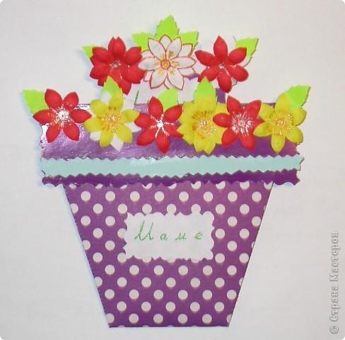 Вот такие цветочки вырастили мы для мама. фото 1