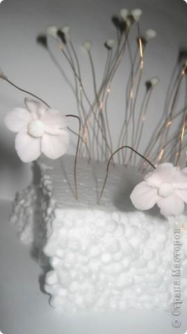 Цветущий бонсай.МК фото 2
