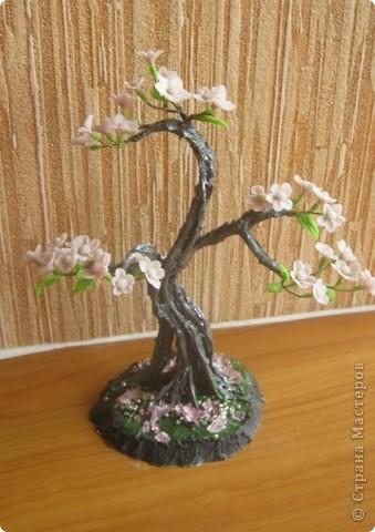 Цветущий бонсай.МК фото 1