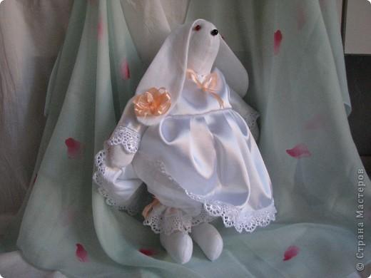 Кролик в белом фото 1