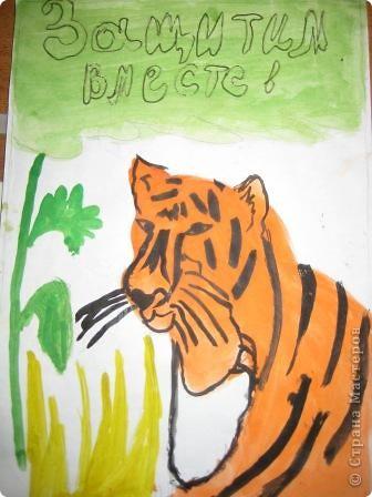 наши тигры... фото 6
