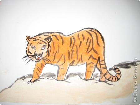 наши тигры... фото 8