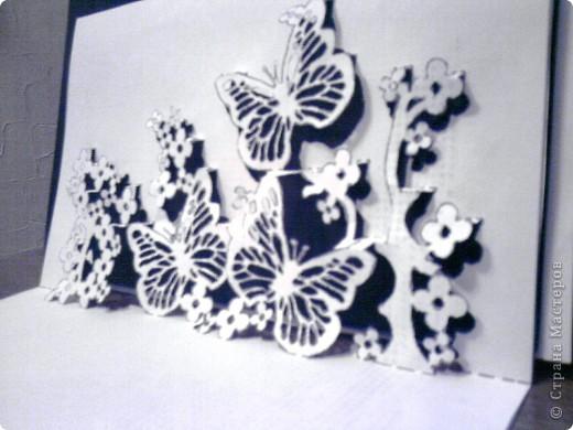 Бабочки в цветах... фото 2