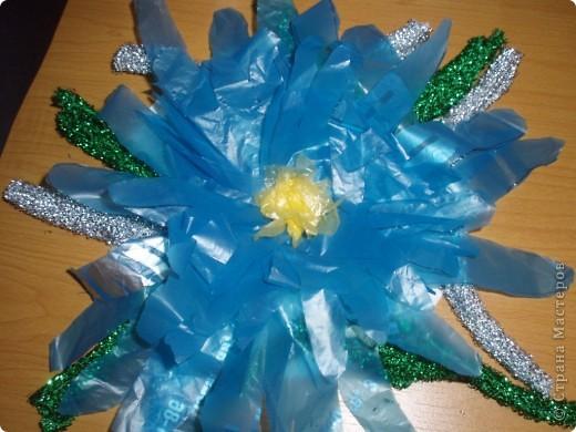 вот такой цветок мне подарили мои мальчики использовали пакеты продуктовые, сделан в ладошковой технике, ладошки побольше Артура серединка маленькие Игнатушкины, украсили листиками.Мне очень понравился:))