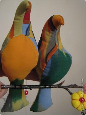 Искала в интернете текстильные игрушки, и увидела стаю птиц! Теперь у меня тоже живут эти прекрасные птицы! фото 1