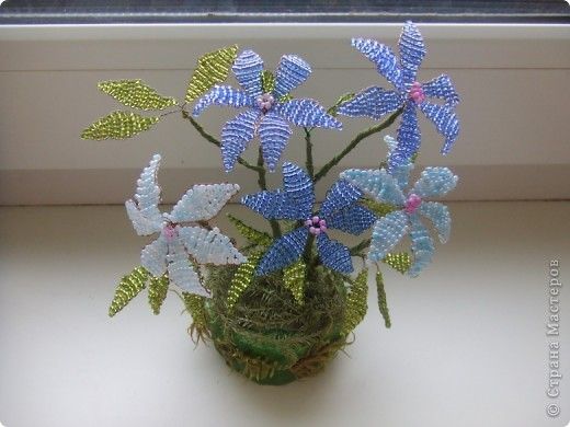 Весенние цветы фото 1