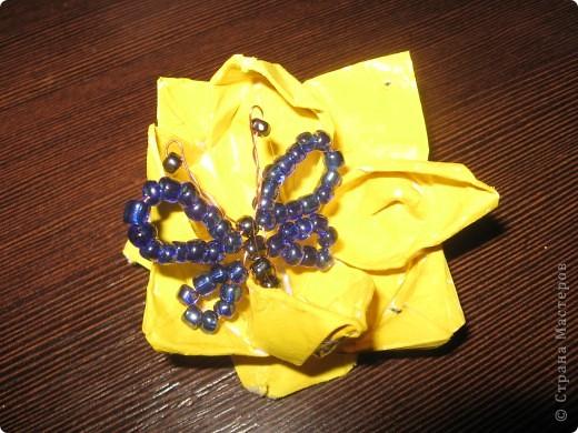 ВОТ моя бабочка фото 6