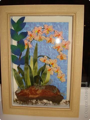 Орхидеи в ночи.Так называется официально работа. фото 3