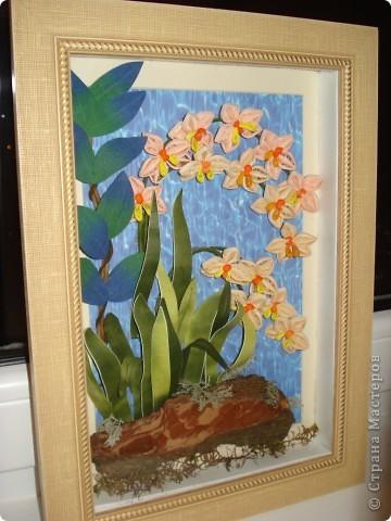 Орхидеи в ночи.Так называется официально работа. фото 2