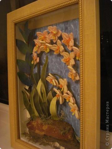 Орхидеи в ночи.Так называется официально работа. фото 4
