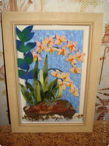 Орхидеи в ночи.Так называется официально работа. фото 1