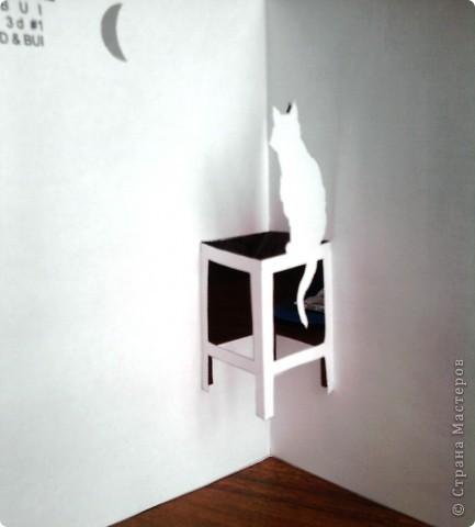 Кошка смотрит на месяц фото 2