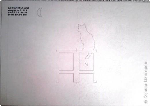 Кошка смотрит на месяц фото 3
