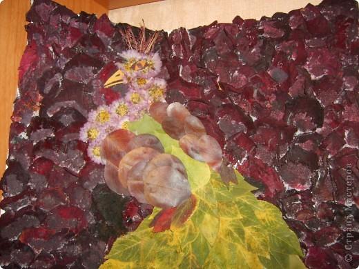 Вот такой павлин у меня получился из сухих листьев фото 2