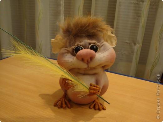 Увидела у Полины Пономаревой прикольного хомячка и влюбилась в него , и решила себе сделать такого же........ Вот такой Кузька получился!!!!!Спасибо Полине за ее чудесные куклы!!!!! фото 1