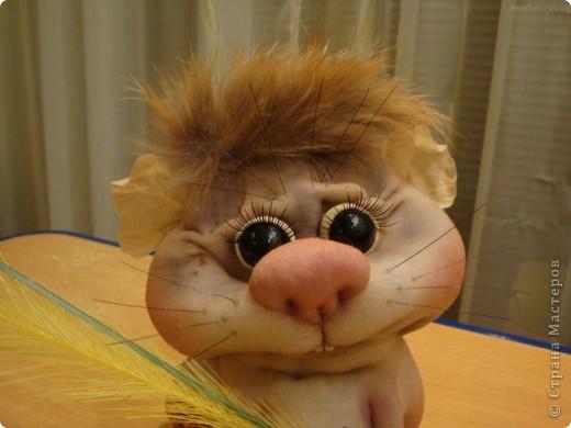 Увидела у Полины Пономаревой прикольного хомячка и влюбилась в него , и решила себе сделать такого же........ Вот такой Кузька получился!!!!!Спасибо Полине за ее чудесные куклы!!!!! фото 2