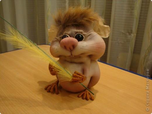 Увидела у Полины Пономаревой прикольного хомячка и влюбилась в него , и решила себе сделать такого же........ Вот такой Кузька получился!!!!!Спасибо Полине за ее чудесные куклы!!!!! фото 3