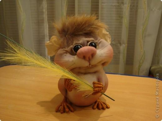 Увидела у Полины Пономаревой прикольного хомячка и влюбилась в него , и решила себе сделать такого же........ Вот такой Кузька получился!!!!!Спасибо Полине за ее чудесные куклы!!!!! фото 5