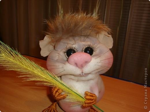 Увидела у Полины Пономаревой прикольного хомячка и влюбилась в него , и решила себе сделать такого же........ Вот такой Кузька получился!!!!!Спасибо Полине за ее чудесные куклы!!!!! фото 6