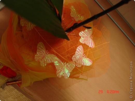 У меня теперь тоже есть орхидея))))) фото 3