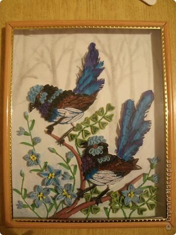 Птички в голубых цветах (квиллинг) фото 2