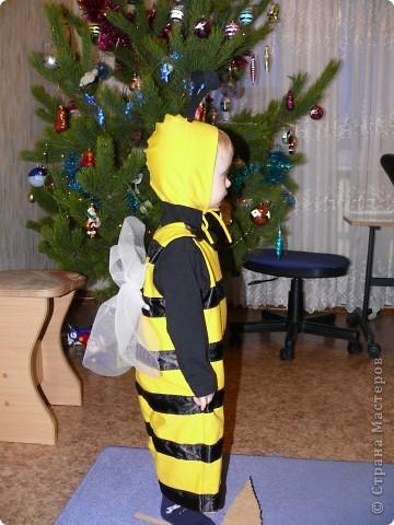 Наш костюмчик на прошлый Новый год. Ж-ж-ж-ж. фото 2