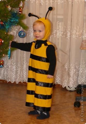 Наш костюмчик на прошлый Новый год. Ж-ж-ж-ж. фото 1