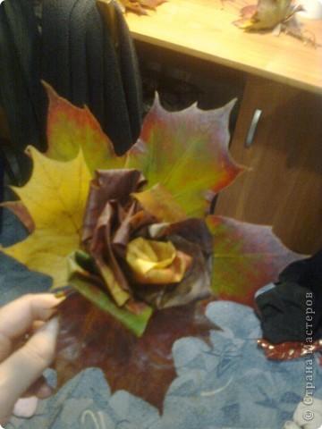 Розы из кленовых листьев. фото 2