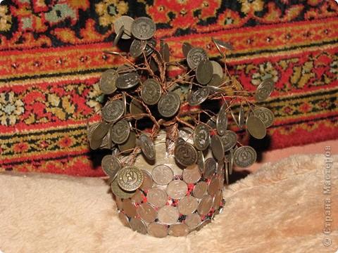 Вот такое маленькое денежное деревце