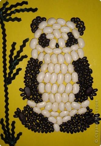 Панда из фасоли  фото 1