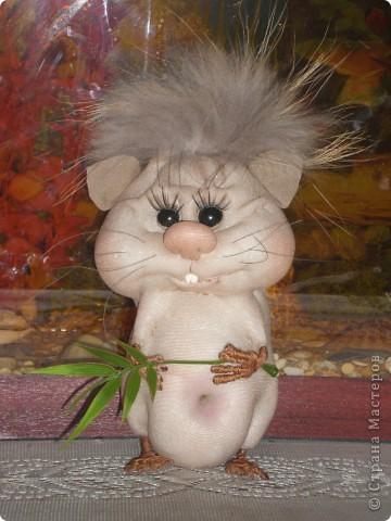 Увидела хомячка у pawy и загорелась идеей сделать себе такую красоту! фото 1