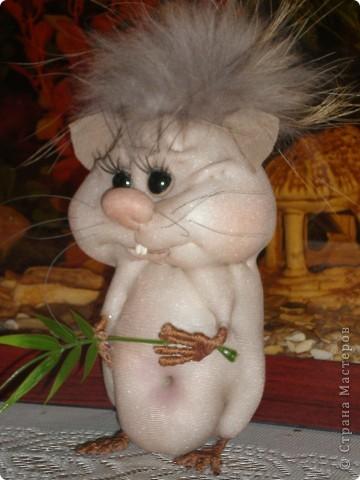 Увидела хомячка у pawy и загорелась идеей сделать себе такую красоту! фото 2