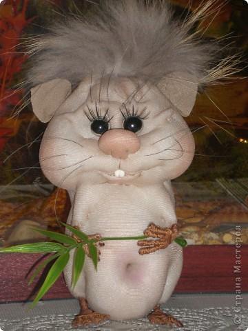 Увидела хомячка у pawy и загорелась идеей сделать себе такую красоту! фото 3