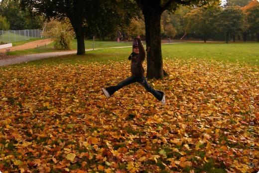 Осень фото 8