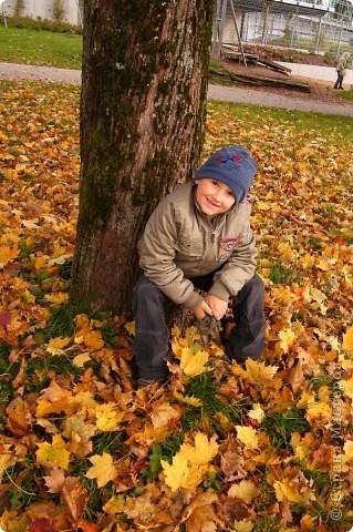 Осень фото 9