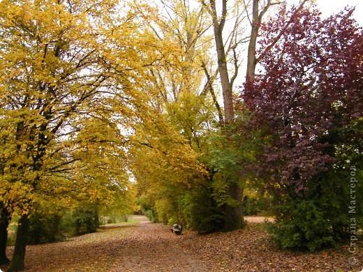 Осень фото 43