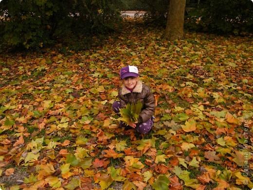 Осень фото 12