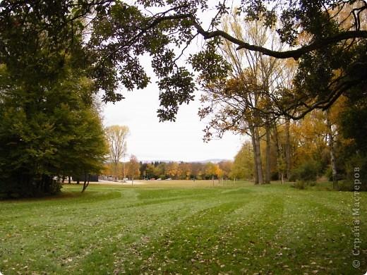 Осень фото 14