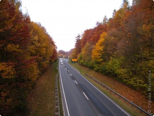 Осень фото 17