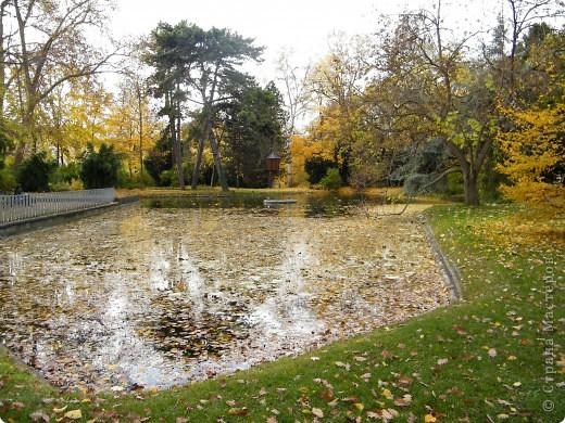 Осень фото 23