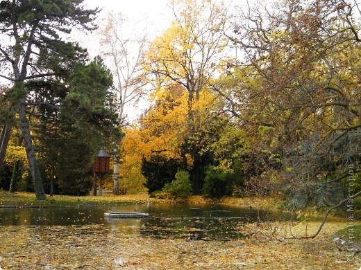 Осень фото 24