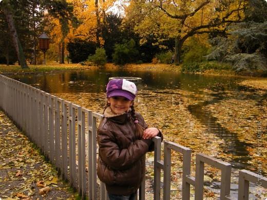 Осень фото 29