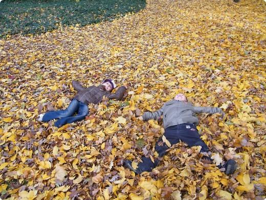 Осень фото 30