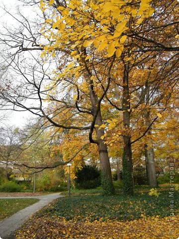 Осень фото 32