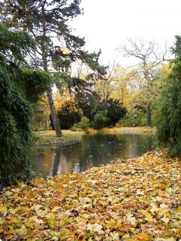 Осень фото 35