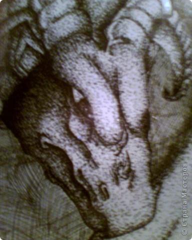 Дракоша фото 3