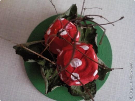 Мухомори-мухоморчики фото 2